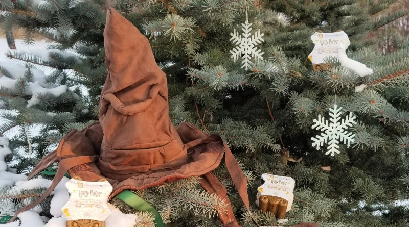 Harry Potter Sorting Hat and Surprise Toy