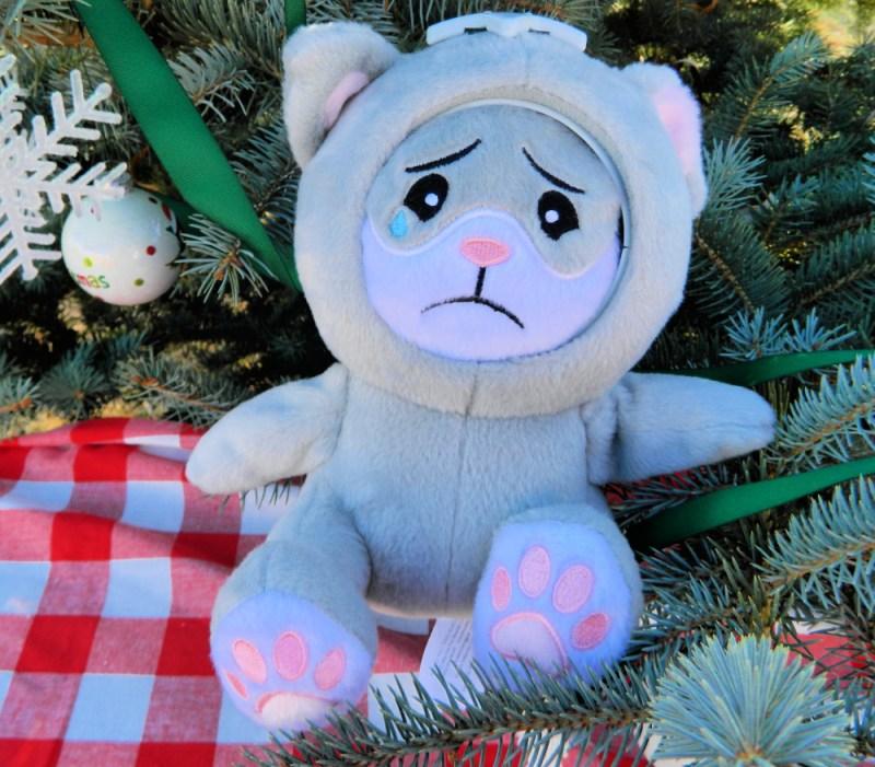 Sad Kitty Cat Whatsitsface