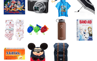 Here is a list of the items you need to take in a Disney backpack with you each day into the Disney parks.