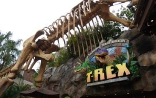 Dinosaur restaurant at Disney