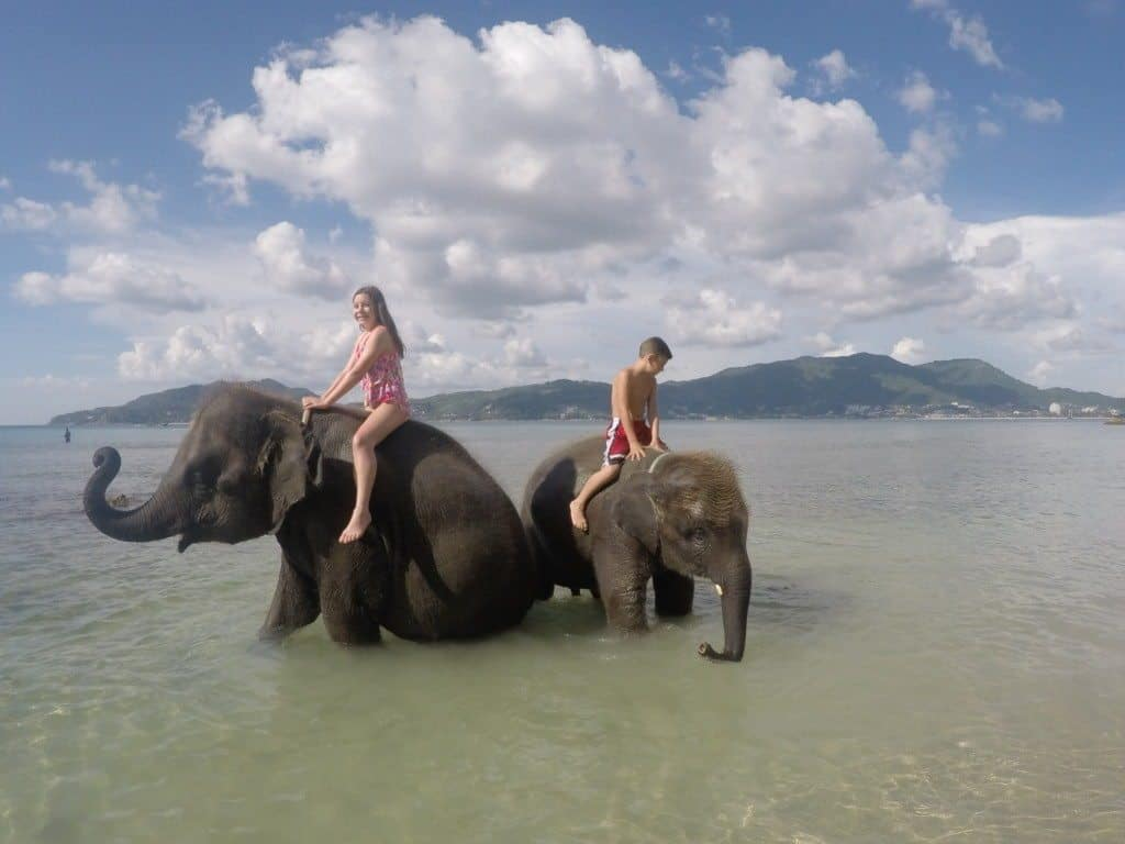 Swimming with Elephants in Phuket