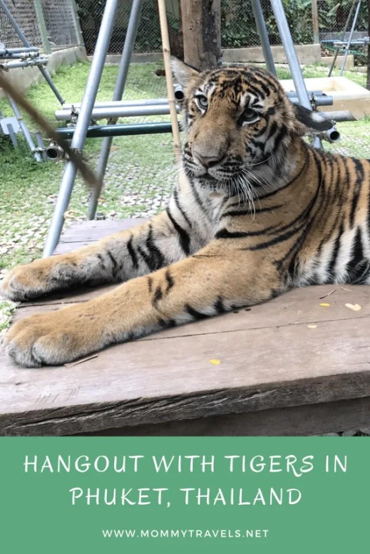 Tiger Kingdom Phuket, Thailand