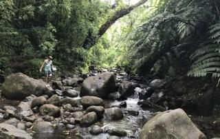 Maunawili Falls hike in Oahu, Hawaii