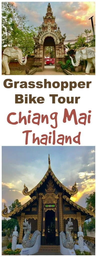 Grasshopper bike tour