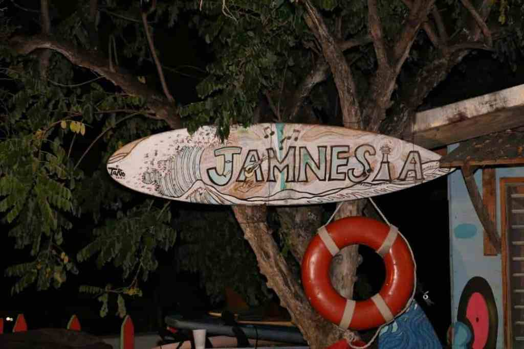 Jamnesia Surf Camp