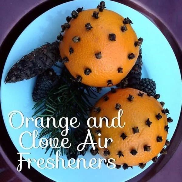 orange-clove-air-freshener