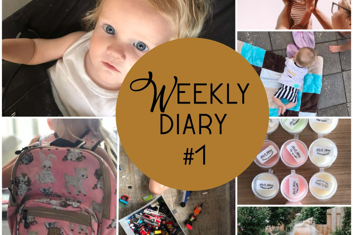 Weekly Diary #1