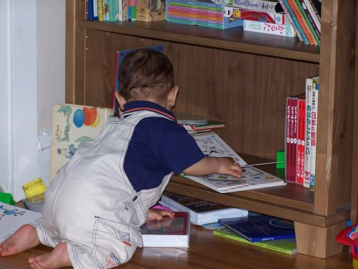 Bookworm at 18 months looking at his books.