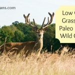 Low Cost Way to Get Grass Fed Paleo Meat:  Wild Game