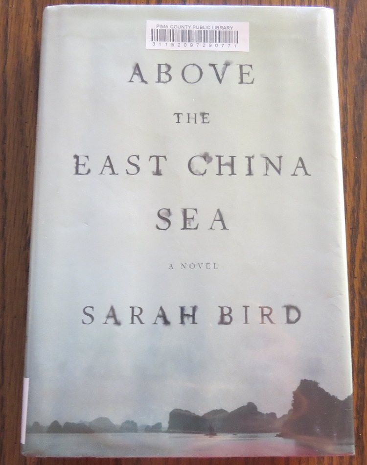 Above the East China Sea by Sarah Bird Cover