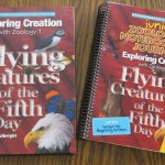 Our Relaxed Homeschool Curriculum for 2nd and 3rd Grade