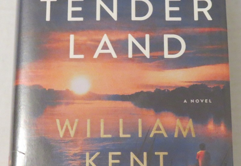 This Tender Land by William Kent Krueger {A Book Review}