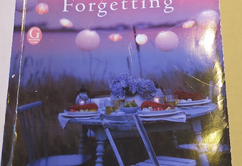 The Sweetness of Forgetting by Kristin Harmel {A Book Review}