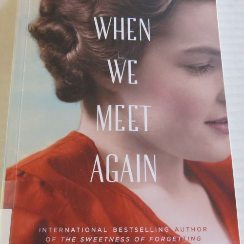 When We Meet Again by Kristen Harmel