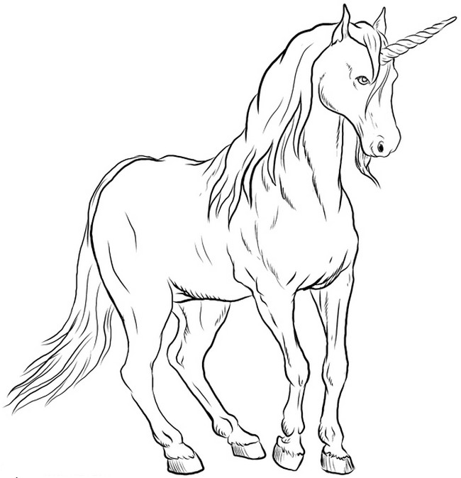 adult unicorn colouring pages