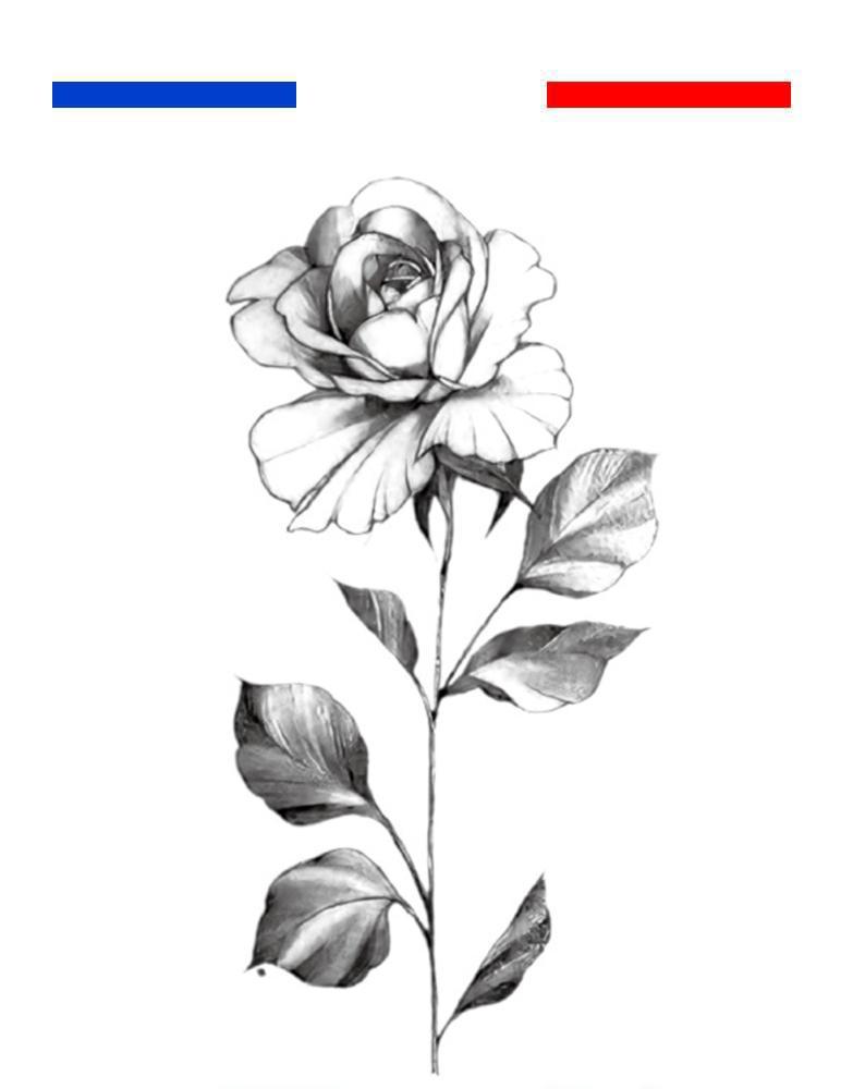 Motif Tatouage Noir Et Blanc: Tatouage Rose Réaliste Noir Et Blanc