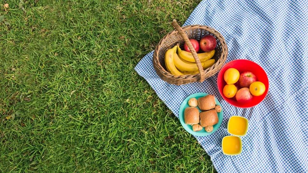 tote bag picnic