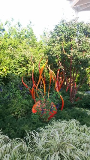 chihuly20160801_192734