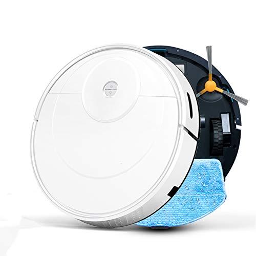BMWY Aspirateur Robot Hoover Aspirateur Pet Coiffure Nettoyage de ménage Robot Moupping Mupping Vide Automatique Recharge Automatique Robot (Color : K100, Size : Us)