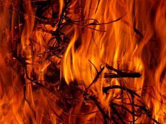 Il cammino Pasquale è compiuto: Pentecoste