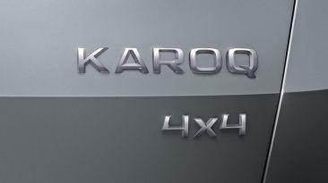 Skoda Karoq logo