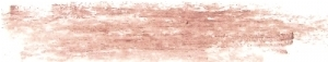 Nude Lip Liner (Beeswax Formula)