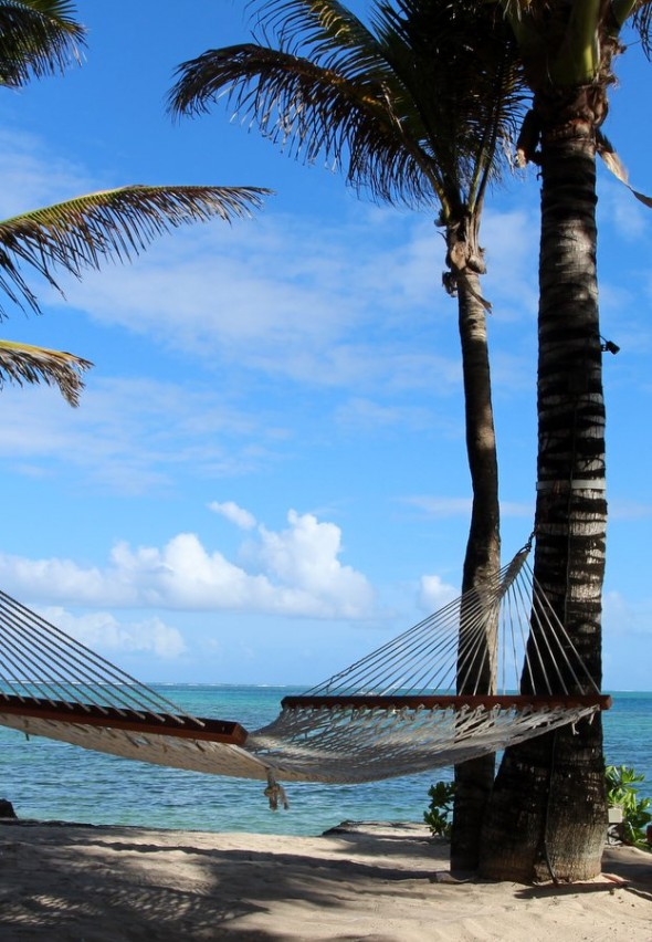 tropical-attitude-hamac