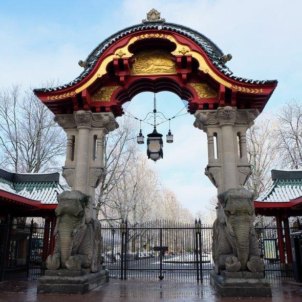 berlin-zoo-porte-elephants