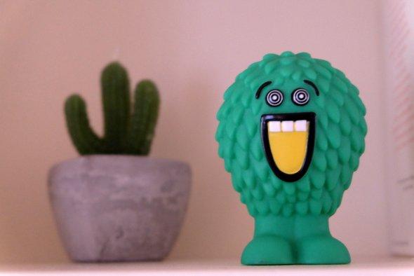 cactus-chokott