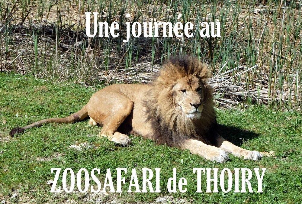 Et faire un safari à Thoiry (Billet sponsorisé)