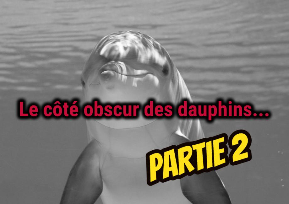 Dauphins: Sexe, rapt et meurtre – Partie 2