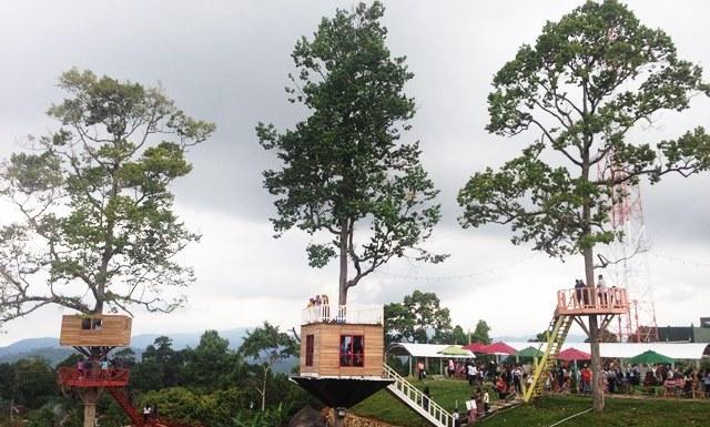 Rumah Pohon Puncak Mas