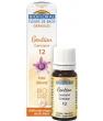 Elixir Gentian n°12 Gentiane en granules Biofloral