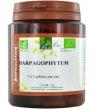 Harpagophytum Bio 200 gélules Belle et Bio