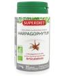 Harpagophytum bio 90 gélules marines Super Diet