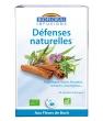 Infusion Elixir Défense Resistance Revitalisant Hiver Biofloral