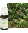 Ylang Ylang Extra Flacon compte gouttes Pranarôm