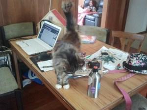 Cassie's writing desk.