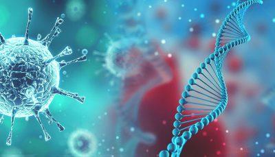 Une nouvelle version de l'origine du coronavirus avancée par les chercheurs