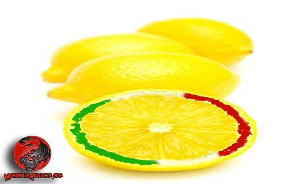 limoni-importazione-made-in-Italy