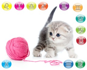 oroscopo del tuo gatto