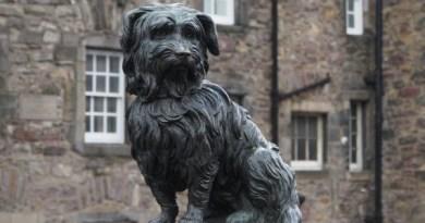 Bobby Greyfriars Edimburgo cani famosi