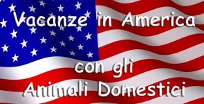 Vacanze in America con Animali Domestici, regole per aereo