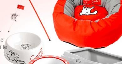 feste idee regalo animali domestici pranzo di natale cenone di capodanno