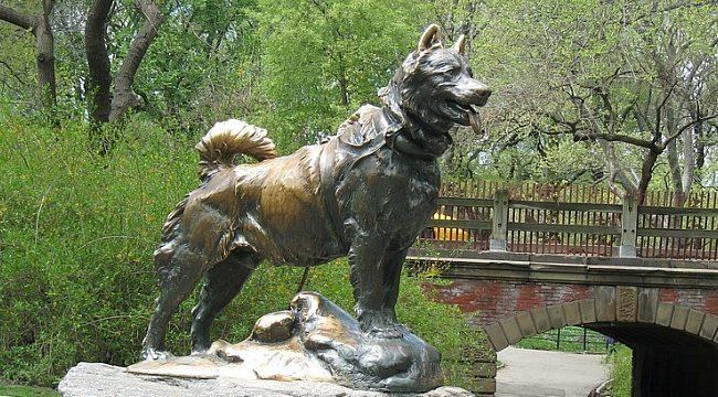 Balto cani eroi