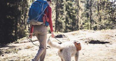 trekking con il tuo cane