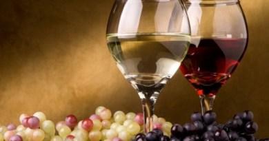 vino fa bene o fa male
