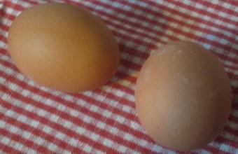 Pasqua, decorare le uova per grandi e piccini