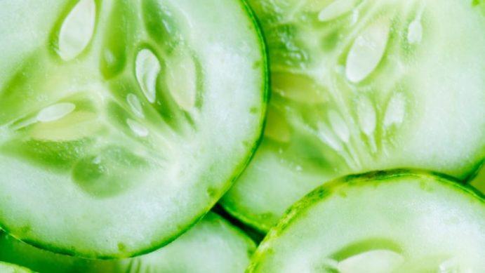 proprietà nutrizionali cetriolo e varietà
