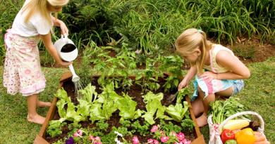 kit per fare l'orto per bambini
